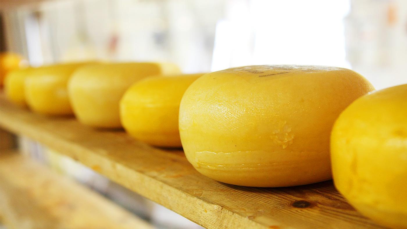 cheeseメイン