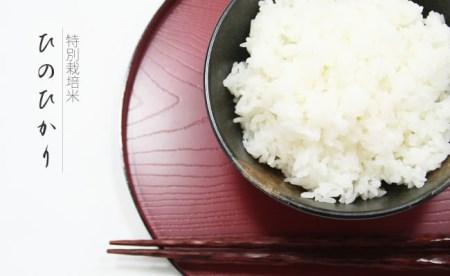 特別栽培米 ひのひかり 27kg