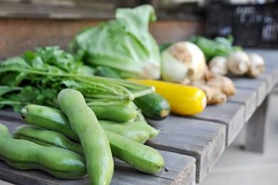 四万十町の新鮮野菜詰め合わせ