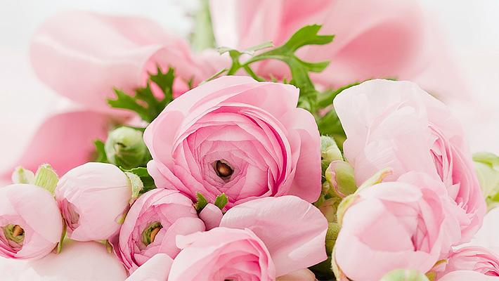 mothersday10