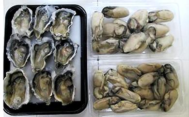 牡蠣づくしセット