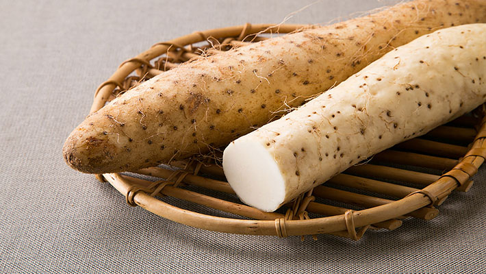 山菜の王者「自然薯」