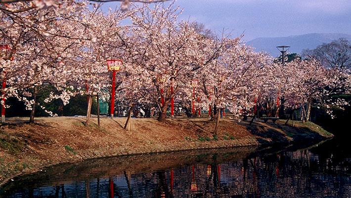 小城市(おぎし)は、九州の小京都とも呼ばれる、小城鍋島藩七万三千石の城下町として古い歴史を持つ町