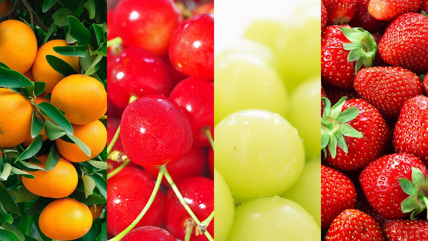 果物フェチ必見!ふるさと納税で四季折々の果物をGETしよう