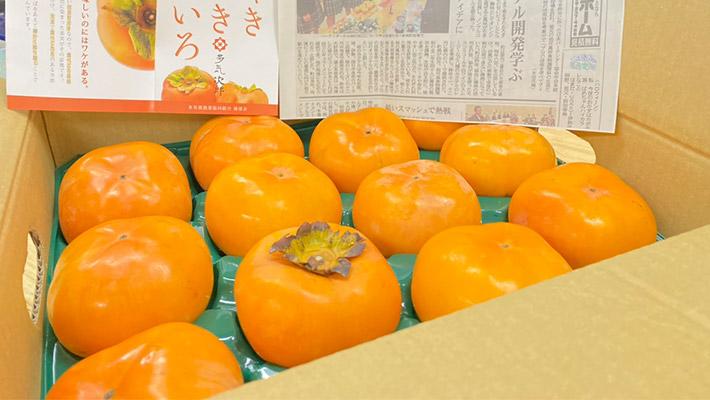 箱詰めの柿