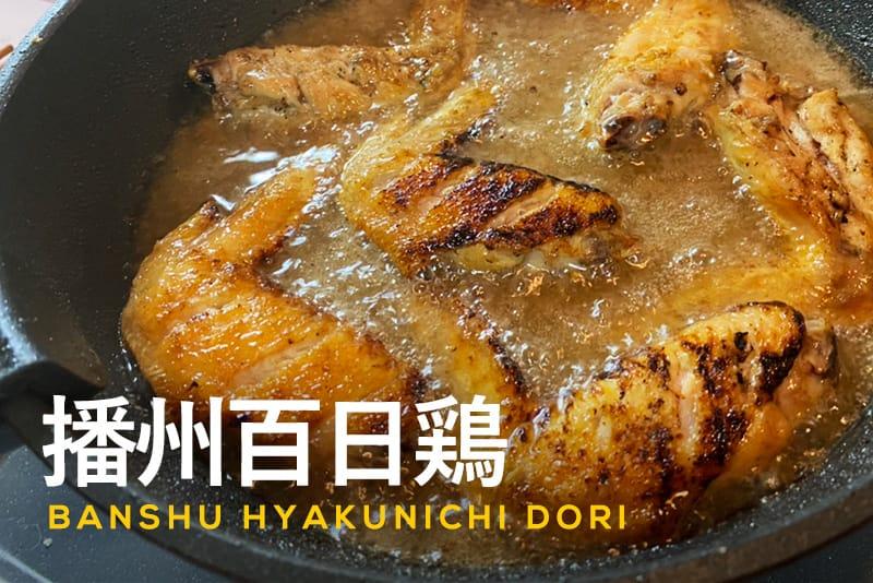100日間じっくり熟成された「播州百日鶏」を新卒iyoが2ヶ月連続で食レポいたします!