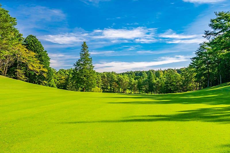 ふるさと納税でゴルフ場利用券を選ぶ場合のポイント