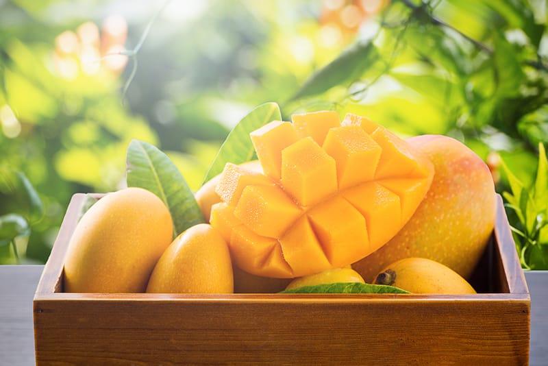 マンゴーの正しい保存方法