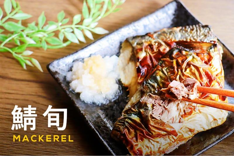 鯖の旬はいつ?種類によって変わる旬の時期と正しい保存法、美味しい食べ方をご紹介