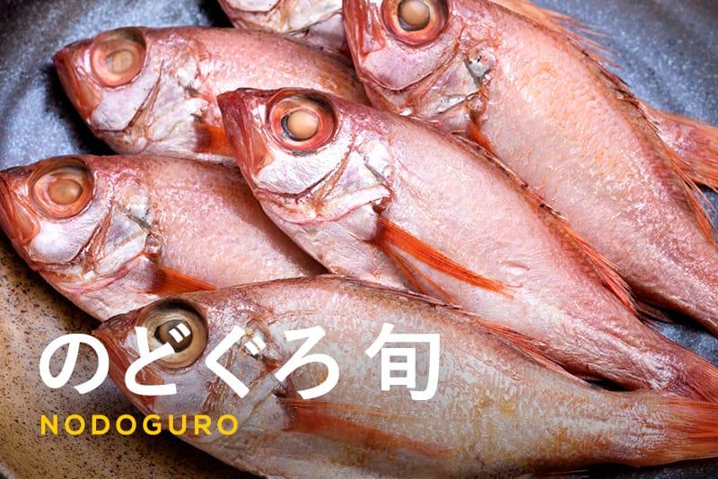 のどぐろの旬はいつ?島根・新潟・金沢などの有名産地や美味しい食べ方・焼き方も解説