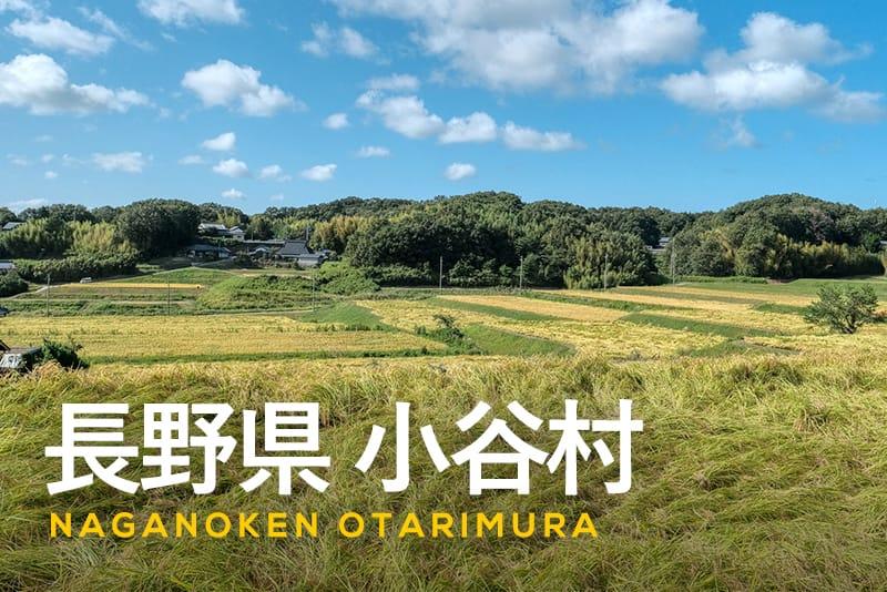 長野県小谷村ふるさと納税の特徴とは?グルメなどの特産品、寄附の使い道をご紹介