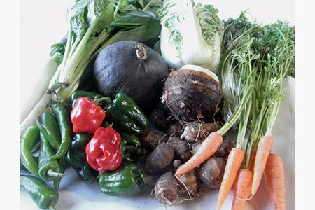 農薬をいっさい使わず栽培した季節の野菜詰め合わせ