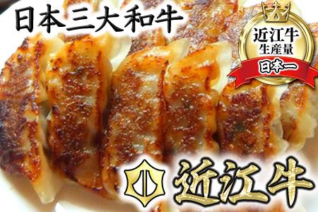 近江牛餃子 【64ヶ(32ヶ×2パック)】【N007SM】
