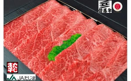 【但馬牛】赤身スライス(モモ・肩部位)(500g)