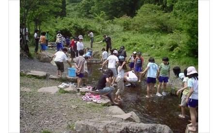 家族で自然と遊ぼう in ハチ高原