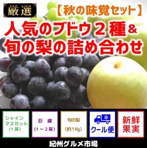 【秋の味覚セット】人気のブドウ2種&旬の梨の詰め合わせ【紀州グルメ市場】
