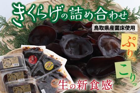 きくらげの詰め合わせ(鳥取県産菌床使用)