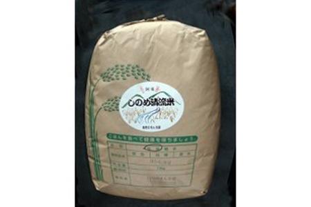しのめ清流米 玄米10kg