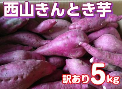 RK-01【訳あり】西山きんとき芋5kg_3,000円