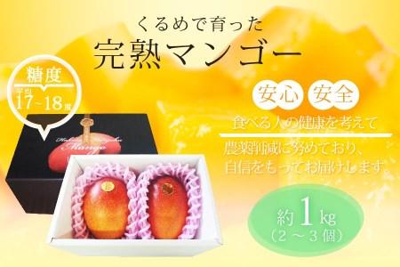 完熟マンゴー(2~3個:約1kg)