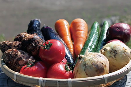 UIC 名水うきはの自然栽培お野菜セットL