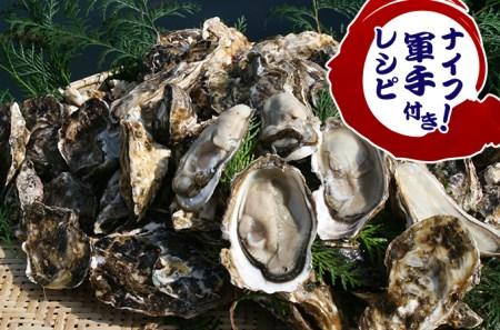 活き殻付牡蠣(加熱調理用)たっぷり4kg