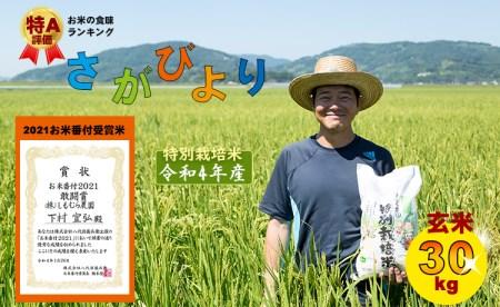 特別栽培米さがびより 30kg(玄米) 4万5千円コース