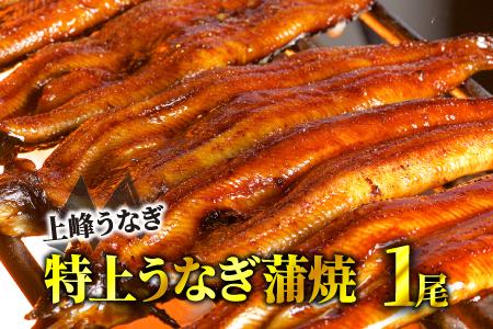 九州産「厳選うなぎの特上蒲焼き」 5尾