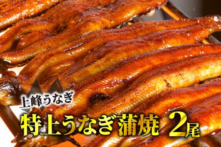 九州産「厳選うなぎの特上蒲焼き」 大サイズ4尾