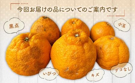佐賀県産 不知火 7kg M~3Lサイズ【数量限定】 柑橘