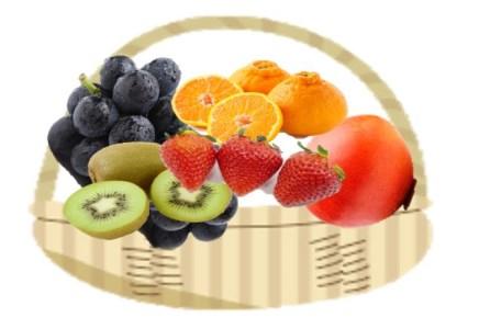 季節のフルーツ(くだもの)定期便12カ月