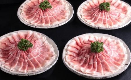 九州産豚モモしゃぶしゃぶ用 美味の逸品!4300g【1日100名限定】