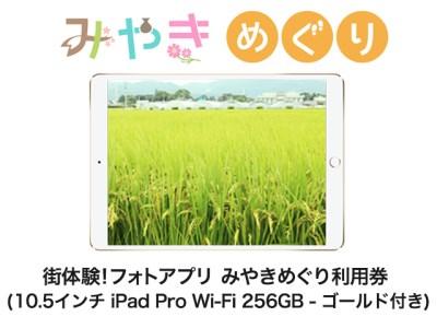 街体験フォトアプリ みやきめぐり利用券  (10.5インチ iPad Pro Wi-Fi 256GB - ゴールド MPF12J/A 付き)