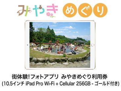 街体験フォトアプリ みやきめぐり利用券  (10.5インチ iPad Pro Wi-Fi + Cellular 256GB - ゴールド MPHJ2J/A 付き)