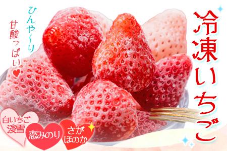 ★ひんや~り★冷凍紅白いちご3種類1kg(さがほのか&恋みのり&淡雪)