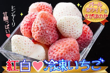 ★有機栽培★紅白冷凍いちご1.1キロ(さがほのか&パールホワイト)