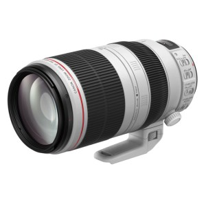 キヤノン交換レンズ(EF100-400mm F4.5-5.6L IS II USM)