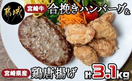 都城産宮崎牛ハンバーグと鶏唐揚げ3.1kgセット
