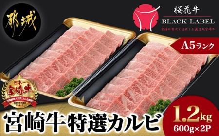都城産宮崎牛特選カルビセット(「A5」ランク)