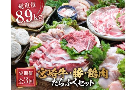 3か月定期便「お楽しみ」宮崎牛・豚・鶏肉たらふくセット(総重量8.9kg)都農町加工品