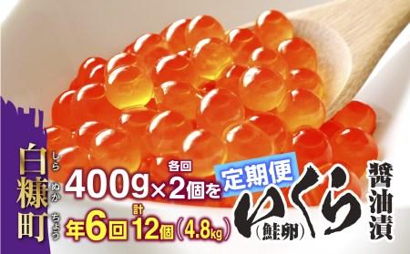 年6回(各回2個)!いくら醤油漬(鮭卵)割安な定期便 【500g(250g×2)×6回(1月・3月・5月・7月・9月・11月)】