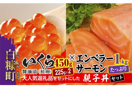 大人気★「いくら醤油漬(鮭卵)」×「エンペラーサーモン」の親子丼セット