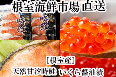 【北海道根室産】いくら醤油漬け160g、甘汐時鮭切身8切