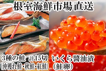 紅鮭・時鮭・秋鮭切身各5切、いくら醤油漬け80g×2P