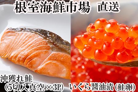 いくら醤油漬け(秋鮭卵)80g×2P、時鮭12切 A-11152