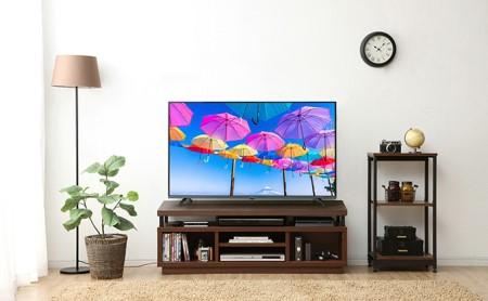 4K対応テレビ 49インチ LT-49B620