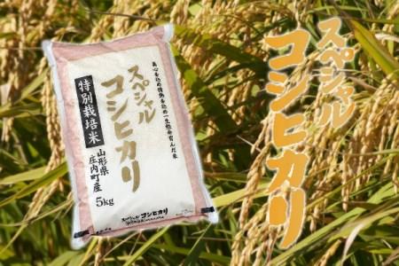 庄内町産スペシャルコシヒカリ5kg(10月以降順次発送)