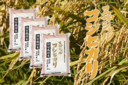 庄内町産スペシャルコシヒカリ8kg(10月以降順次発送)