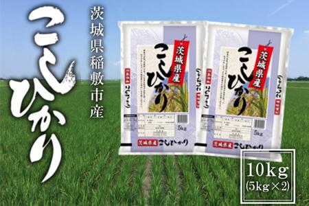 【令和2年産】稲敷市産コシヒカリ10kg(5kg×2袋)