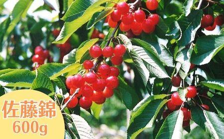 藤崎果樹園のさくらんぼ【佐藤錦】300g×2